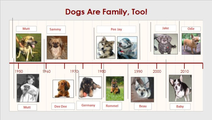 DogsAreFamilyTimeline