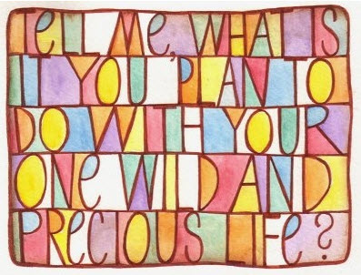 Tell me what is it you plan to do with your one wild and precious life?