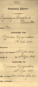 Black Oak Thickett Survey