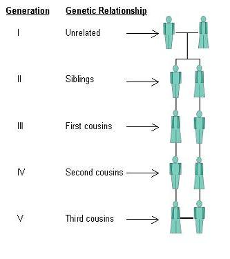 Genetic Relationships