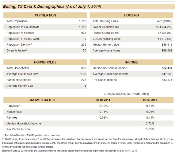 Boling TX Data and Demographics
