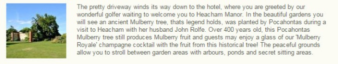 Heacham Mulberry Tree