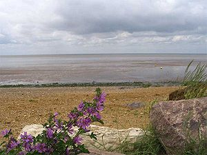 The_Wash,_Heacham_beach
