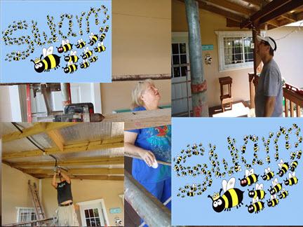 Bee swarm on porch