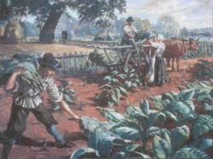 English_Settlers_Harvest_Tobacco_1
